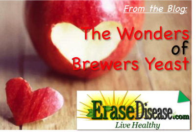Blog_Brewers Yeast